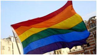 ¿Puede explicar la epigenética la homosexualidad? Bioética Web